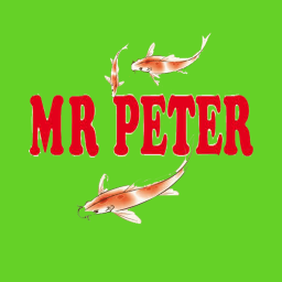 Mr peter screen icon 1
